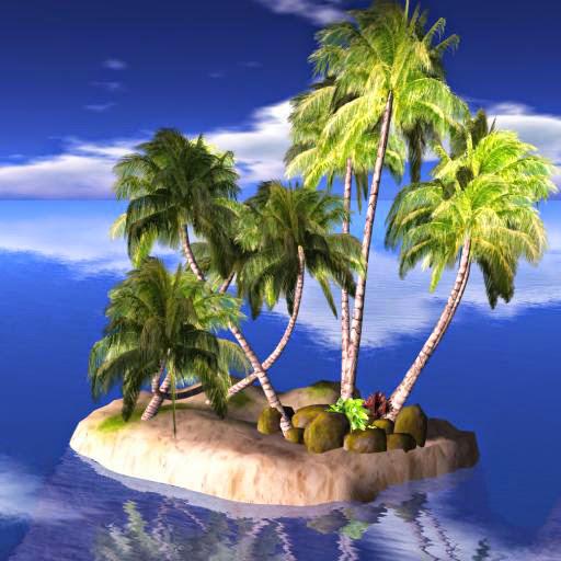 Palm Tree Island: Tree Tropical Landscaping