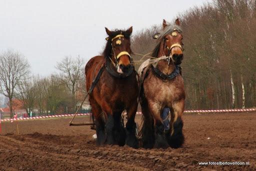 Historische ploegdag   Westerbeek 04-03-2012 (30).JPG
