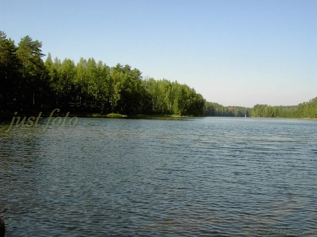 Семиозерье озеро лес пейзажи фото