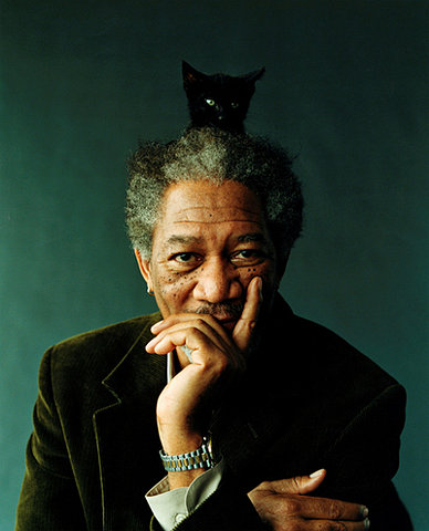 Morgan Freeman and a cat 2