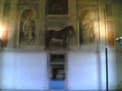 Palazzo Te - Mantova - 7