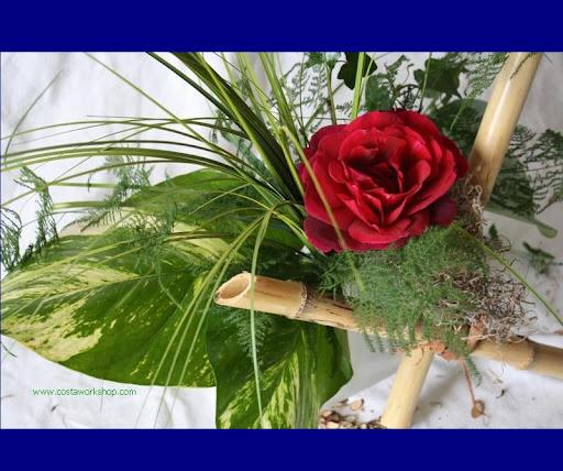 Rode roos met bamboe w.JPG