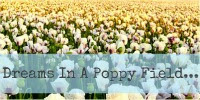 Dreams In A Poppy Field