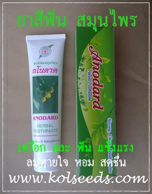 ยาสีฟันผลิตจากกานพลู ข่อย สมุนไพรไทย ขจัดคราบหินปูน ฟันขาว ป้องกันฟันผุ และ เหงือกอักเสบ รสชาติดี