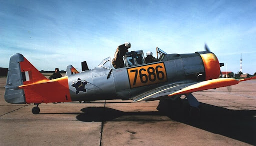 Bayou Renaissance Man: The T-6 Texan in South African service