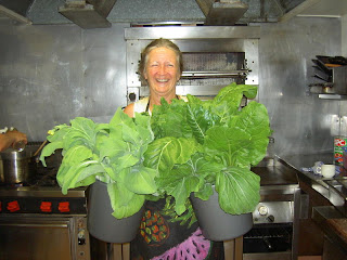 Rose gets ready to cook - with organic vegies, fresh from our garden