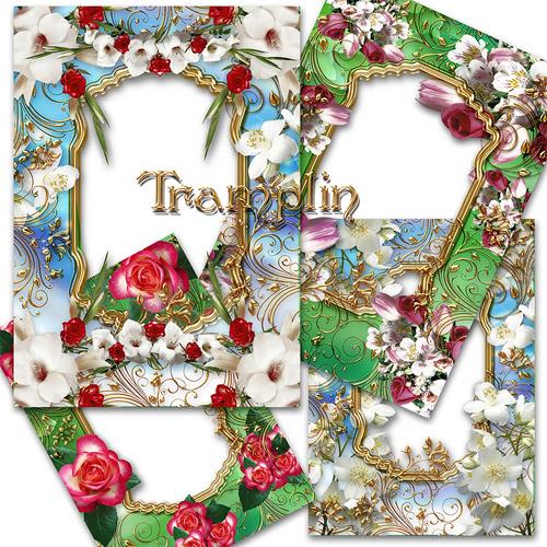 6 замечательных рамок  в Png с цветами