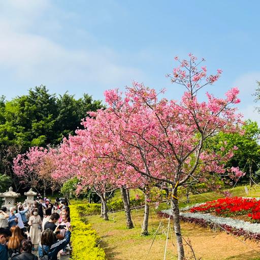 Tom Huang Photo 28