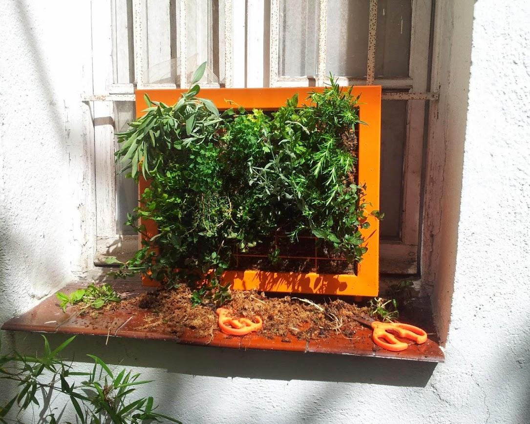 cuadro vegetal leaf.box