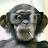 Ricky Stambury avatar image