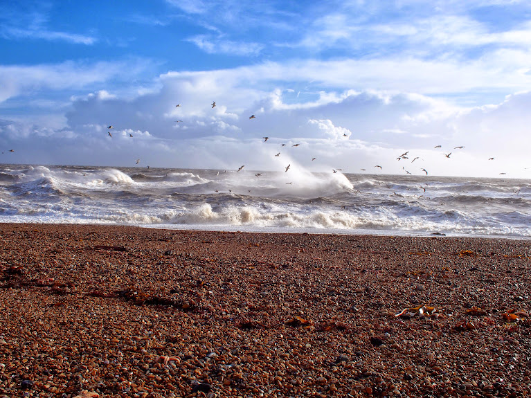 shoreham beach storms 2014
