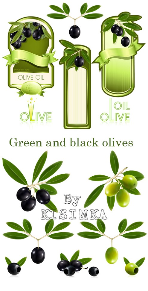 Stock: Green and black olives with leaves