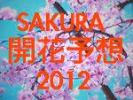 2012櫻花預想