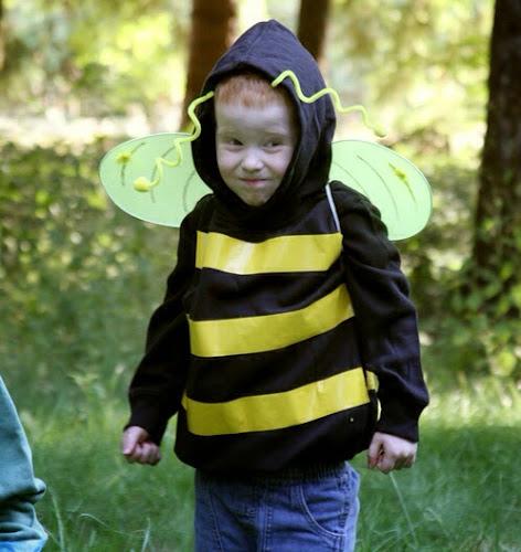 Včela karnevalová maska