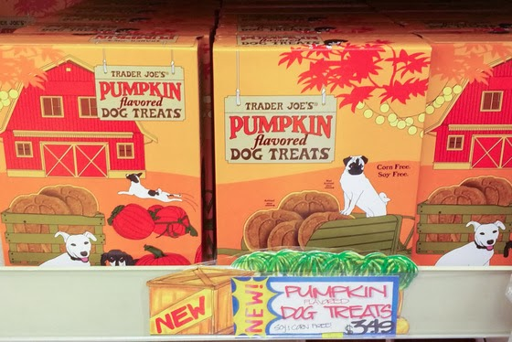 Trader Joe's Pumpkin Edition