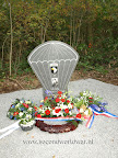 101st Airborne Divisie officier Lt. Col. Robert Cole Monument in Best