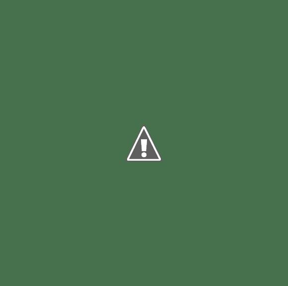 Эхолоты для рыбалки отзывы. Рыбопоисковый эхолот Furuno FCV-581L обзор.