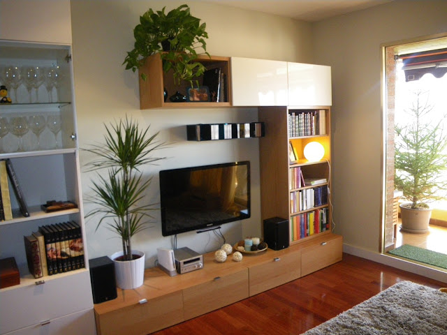 Febrero 2011 - Muebles de salon baratos ikea ...