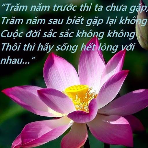 Truong Ma Photo 6