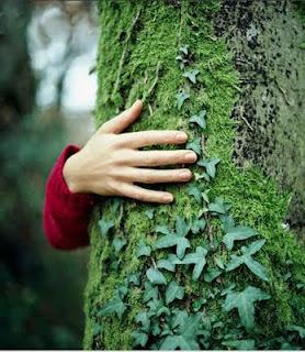 Resultado de imagem para imagens mulher abraçando árvore