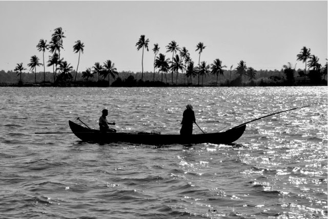 Promenade sur les Backwaters