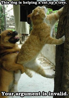 your argument is invalid this dog is helping a cat up a tree, your argument is invalid, this dog is helping a cat up a tree, funny animals, funny cat, funny cat and dog, invalid argument cat dog