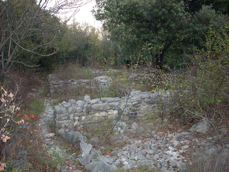 Escursione storico-cinofila Aurisina-Sistiana – 12 aprile 2014