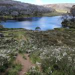 Rainbow Lake (97165)