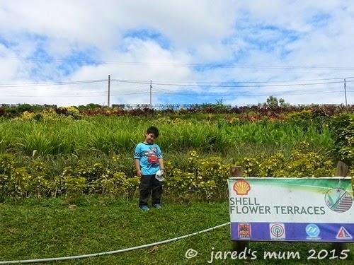 parks, educational places for children to visit, travel, destination