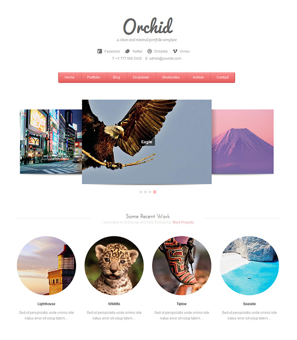 Orchid WordPress Theme for Wedding Photographers