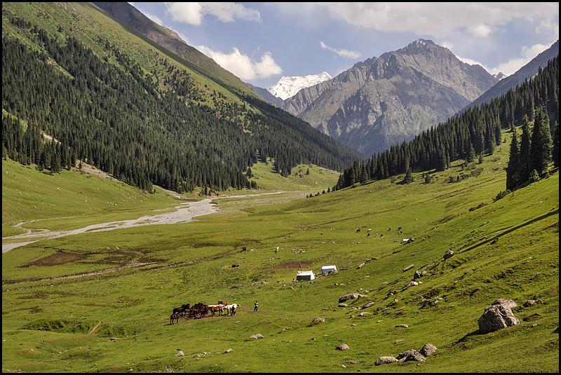 Kirghizstan : des steppes aux Monts Célestes [MAJ 16/09] DSC_9547%2520raw-794%252Bcadre