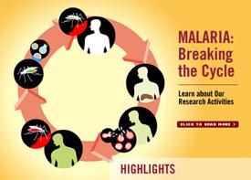 malaria Penyakit Malaria
