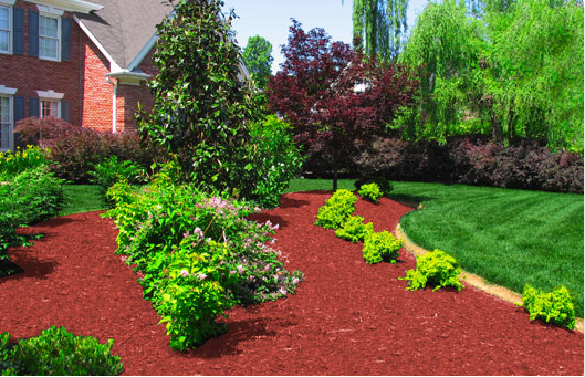 Mailbox Garden Ideas Red Mulch Photograph Color Specialist