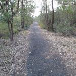 Track below car park (180024)