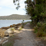 Track to Flat Rock Point (29429)