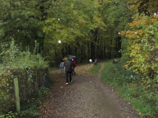 Nuit de Bocholtz(NL): 100/110km: 28-29/10/2011 2010-10-29_Noad%252520Bocholtz%252520110%252520km%252520063