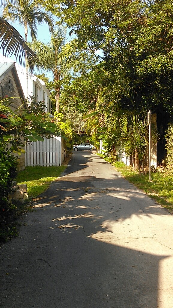 Carsten Lane, Key West