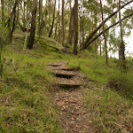 Timber steps near Mt Sugarloaf (324698)
