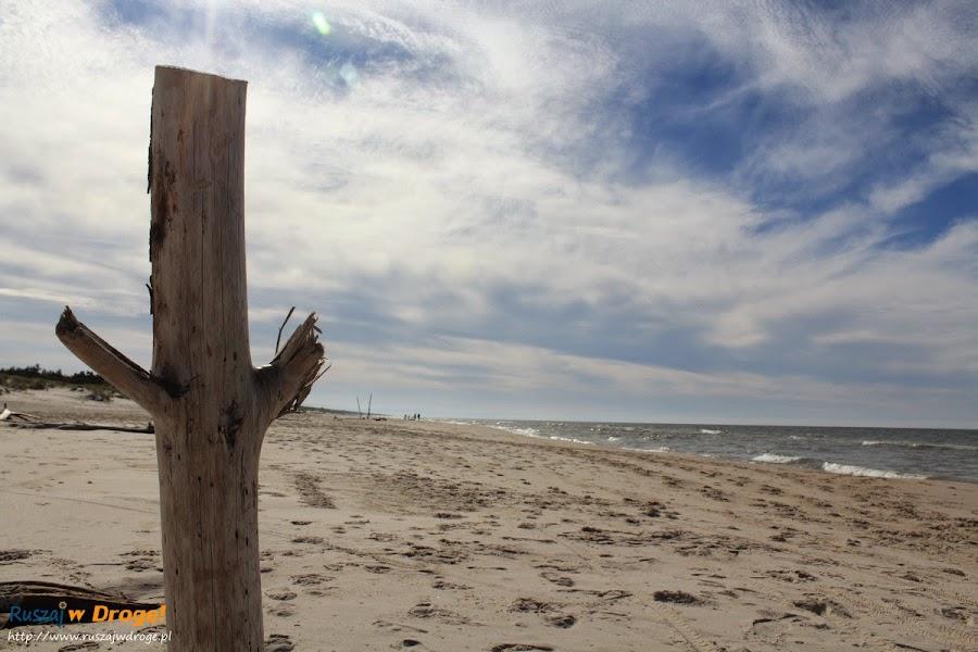 Plaża w Czołpinie