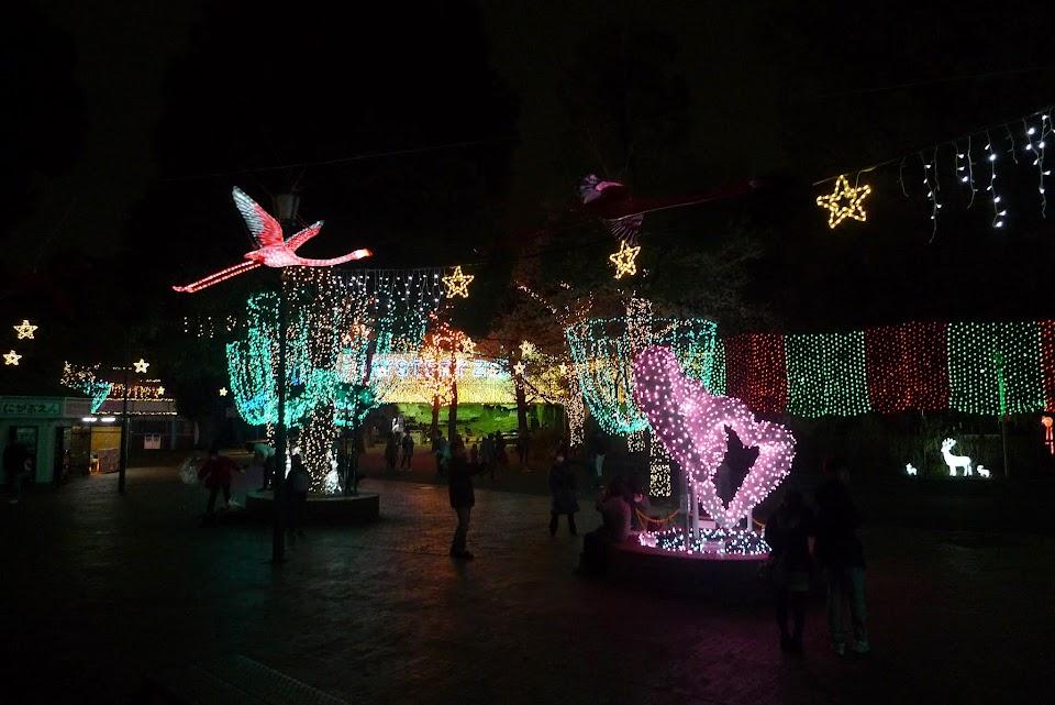 toshimaen illuminations