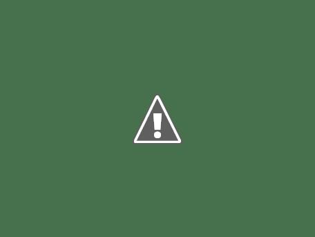 Tipos de acabados para la placa facil construya f cil - Como pintar un techo ...