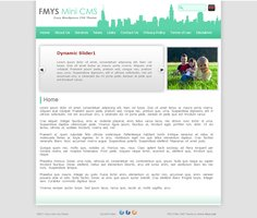 WordPress Premium Theme - FMYS Mini CMS