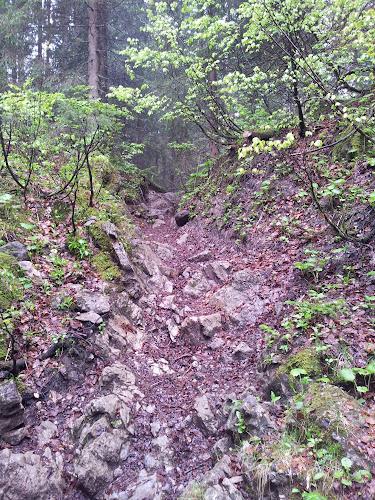 Hier ein Foto von einem recht steilen Stück Anstieg mit Steinen
