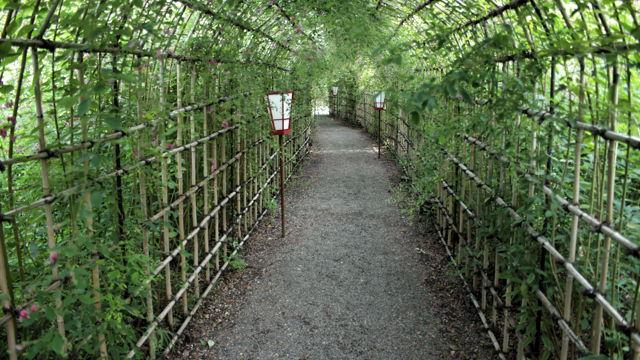 向島百花園 萩のトンネル