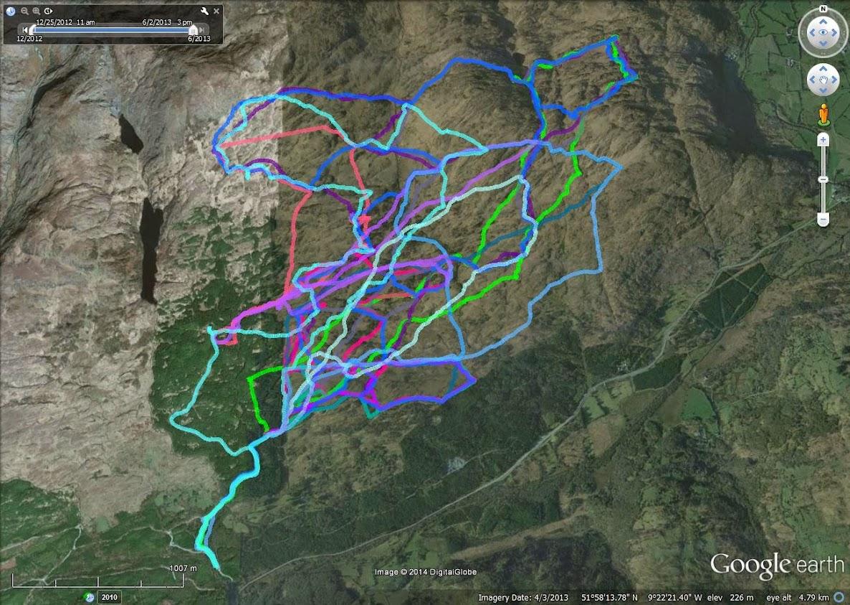 Crohane December 2012 - June 2013 coloured