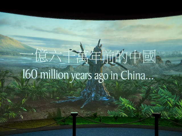 "movie of ancient landscape with text ""160 million years ago in China..."""