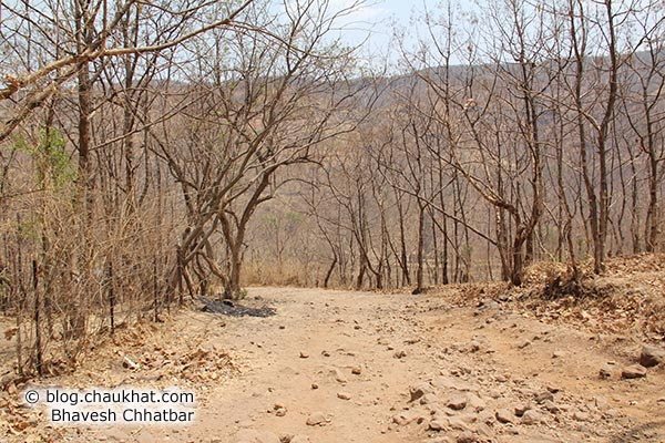 Dry soil on way to Sinhgadh Valley during the hardest time of the year, which is the month of May