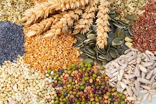 Eat grains and cereals, it's good for your health