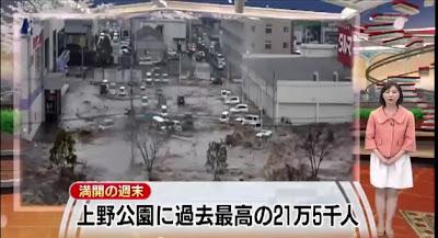テレビ朝日、花見ニュースに津波画像使用