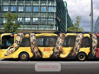 Autobus ZOO